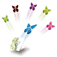 Assortment pack of butterflies