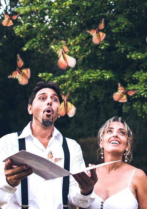Amazement of butterflies